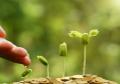 Investire responsabilmente con i PRIIP