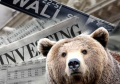 bear 300210.jpg