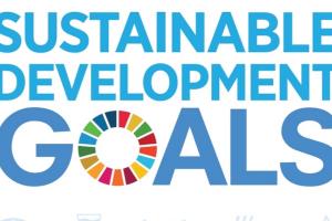 1a40317693 Syz lancia un bond che persegue gli obiettivi di sviluppo sostenibile