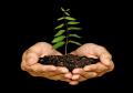 PIMCO: perché integrare i criteri ESG nella selezione dei bond governativi