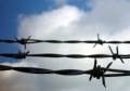 barbed-wire-4-1475306-1599x1066.jpg