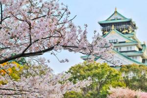 Il fascino delle società giapponesi a conduzione familiare