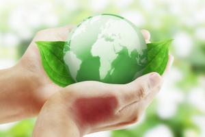 Elezioni USA, in gioco c'è anche la sostenibilità