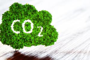 Il reddito fisso sposa il low-carbon